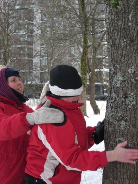 Milla vie puulle: Aikuisryhmille järjestetään ympäristökasvatuskursseja. Kursseilla kasvattajat saavat käytännön vinkkejä ryhmän ohjaukseen. Lisäksi yrityksille voidaan räätälöidä omia retkiä, vaikka Tyky-päivälle.