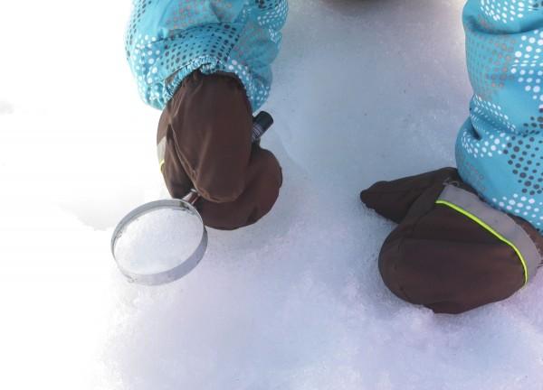 Hiihtolomaviikolla Haltian luontopolulla ihailtiin lumitähtiä ja etsittiin eläinten jälkiä.